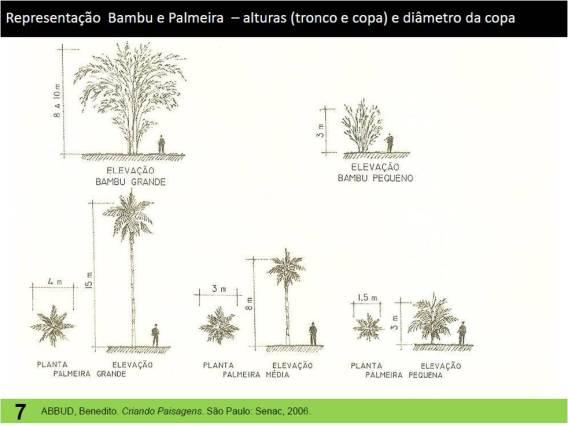 Representa es gr ficas para paisagismo algumas sugest es for Arid garden design 7 little words